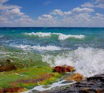 Fun waves of the Black sea  von Yuri Hope