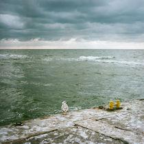 raue See von Krystian Krawczyk