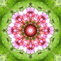 Pink and Green Kaleidoscope von tataniarosa