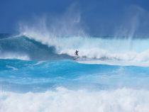 Wellenreiten in Hawaii auf der Insel Maui by mellieha