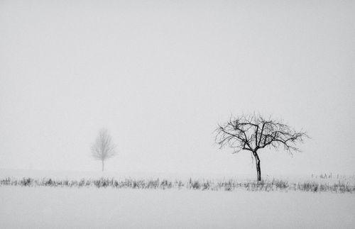 Michal-kabzinski-018-neighbors