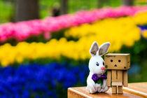 bunny and danbo von booozone