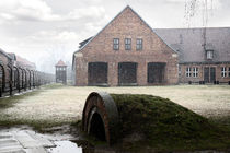 Auschwitz 1 von Norbert Fenske