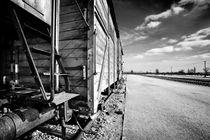 Auschwitz Birkenau, Rampe von Norbert Fenske