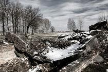 'Auschwitz Birkenau' von Norbert Fenske