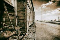 Auschwitz Birkenau by Norbert Fenske