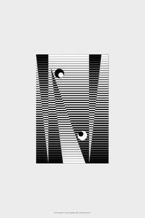 MicroGraphie 004 perlentaucher by Tomas Spahn