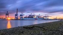 Hafen-Sonne-Wolken von photobiahamburg