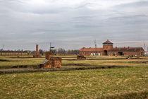 Auschwitz Birkenau von Norbert Fenske