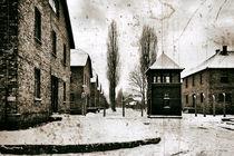 Auschwitz 1 by Norbert Fenske