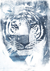 Blue tiger stencil by anamizuta