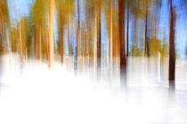 Winterwald - weiß/blau von gugigei