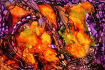 Ocean Fire by Werner Winkler