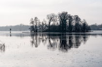 Winter am Seddinsee by Rainer F. Steußloff