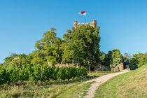 Burg Klopp 82 von Erhard Hess