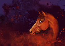 Copper von herzenspferd