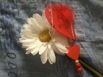 Blume und Liebe von isma
