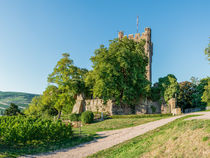 Burg Klopp in Bingen 88 by Erhard Hess