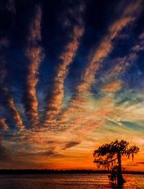 Louisiana Sunsets No.17 by Michael DeBlanc