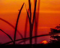 Louisiana Sunsets No.18 by Michael DeBlanc