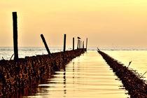 Goldene Nordsee von Michael Bürger