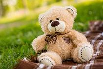 Teddy bear on the green grass by Gaukhar Yerk
