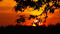 Sonnenaufgang von Felix Raetsch