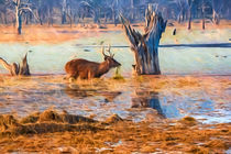 Deer in the swamp von Pravine Chester