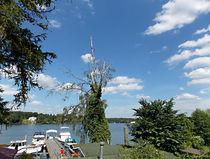 Der Peetz-See... von voelzis-augenblicke