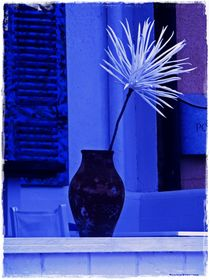 Dipped in Blue by Sandra  Vollmann
