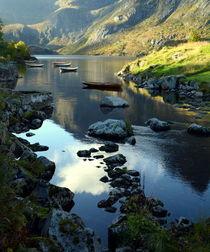 Stille im Fjord von gugigei