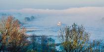 in den Nebel von georgfotoart