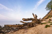 'Ostseeküste auf der Insel Rügen' by Rico Ködder