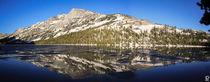 'Yosemite's Beauty' by Philippe Goetz