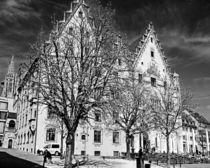 Rathaus Ulm ( City Hall Ulm ) by Michael Naegele