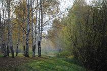 autumn landscape by Natalia Akimova