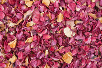 Dried petals of rose by kgm