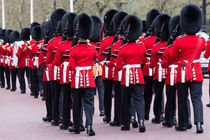 Grenadier Guards von David Pyatt