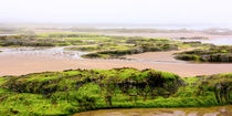 Ein nebliger Morgen am Firth of Forth von gscheffbuch