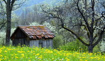 Alte Hütte by gugigei