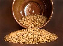 Flax seed by kgm
