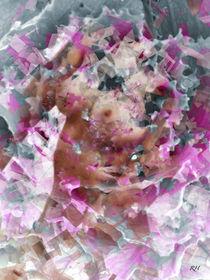 GEOMETRIC V  by Rosemarie Hofer