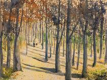 Spaziergang in der Morgensonne von Isabell Tausche