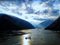 Trip to Sawyer Glacier von Gena Weiser