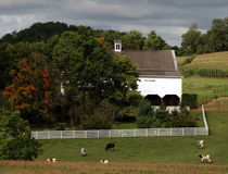 Farm-at-the-start-of-fall