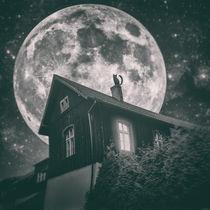 Cat by night - part two von Simon Siwak
