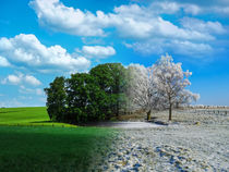 Spring meets winter von brava64