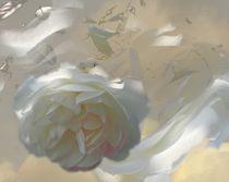 Weiße Rose von Thuvos Virtuelles Atelier