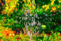 Summer watering by Yuri Hope