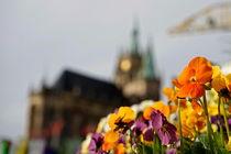 Frühling in der City by hibiskus